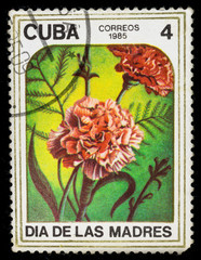 Old postage stamp printed in Cuba in 1985 with a bouquet of dianthus flowers, mother's day series.