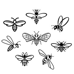 Honey Icons set. Honey bee set. Vector. Set of honey and bee labels for honey logo products. Isolated insect icon. Flying bee. Flat style vector illustration.