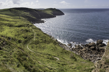 Port Isaac to Port Quin - Reedy Cliff - landscape