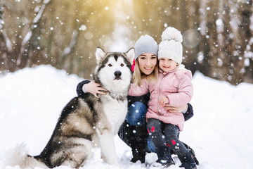 Family portrait of a mother with her daughter hugging with their Alaskan malamute dog on a trail in the winter forest. Lovers of pets and the concept of freedom of life.