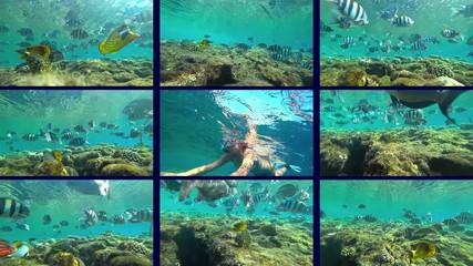Wall Mural - girl swimming on sea