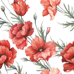 Delicate seamless pattern with poppies. Watercolor  illustration.