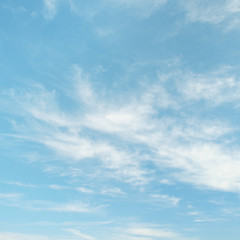 Light cirrus clouds on light blue sky
