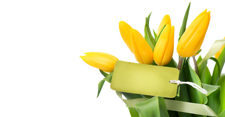Fotoväggar - Mather's Day holiday spring yellow tulips flower bunch with blank greeting card. Beautiful tulip flowers bouquet isolated on white background