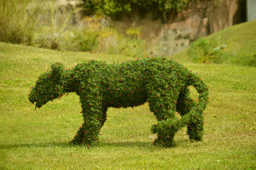 Topiary figure of a lioness