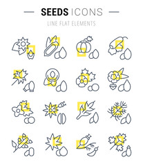 Set Vector Line Icons of Seeds