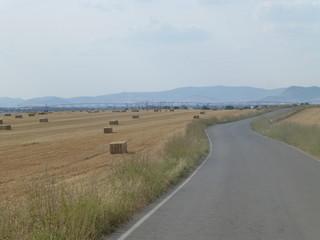 Las Tablas de Daimiel, parque nacional de Ciudad Real (Castilla la Mancha, España) que protege el humedal