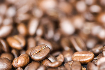 coffee beans close-up with a blurred background