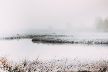 Early foggy morning on the shore of the lake mirror. Frost on the grass near the water.