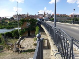 Tordesillas,localidad de la provincia de Valladolid en la comunidad autónoma de Castilla y León (España)