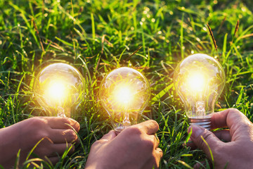 group hand holding lightbulb with sunset on grass. concept idea solar energy