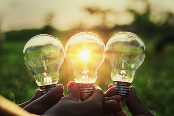 group hand holding lightbulb with sunset. concept idea solar energy