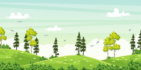 Wall Mural - Summer landscape with trees
