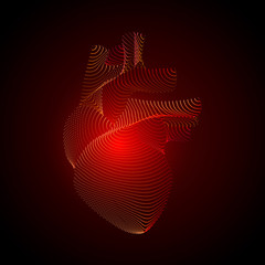 Vector isolated heart with pain center. 3D white human organ on dark background. Medicine concept with points. Abstract heart pain mash line origami