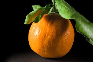 One ripe oranges on black background
