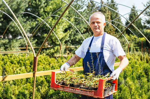 Farmer Holding Crate Of Organic Plants In Outdoor Plant Nursery Small Business