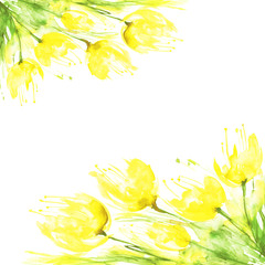 yellow tulips watercolor bouquet isolated on white background. Watercolor card, invitation, label. Spring flowers, art illustration.