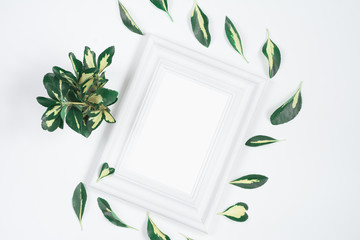 White frame backround with yellow-green leaves around