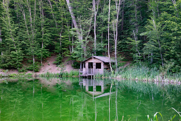 wooden house on the shore of a small lake surrounded by trees and vegetation.
