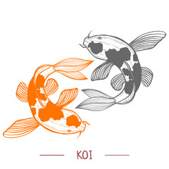 Karp Koi. Fish in Hand Drawn Style for Surface Design Fliers Prints Cards Banners. Vector Illustration