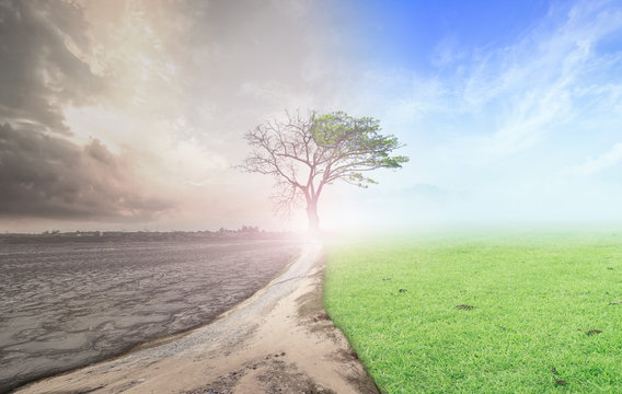 World environment day concept: Climate worsened with good atmosphere background