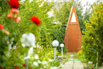 Fototapete - Picturesque path to the dacha toilet in the garden