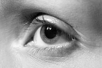 opened female eye