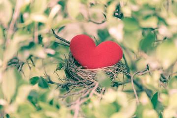 red heart in bird nest