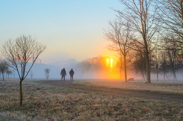 Two men in the early foggy morning walk their dogs. Male silhouettes in a strong morning fog. Rays of the sun in the reflection of the windows of buildings cut through a thick fog
