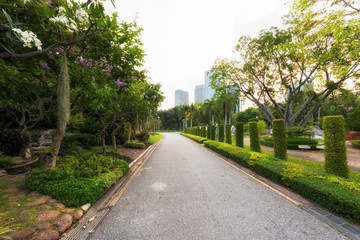 Road at green gaden park for jogging, Beautiful urban park no people in morning