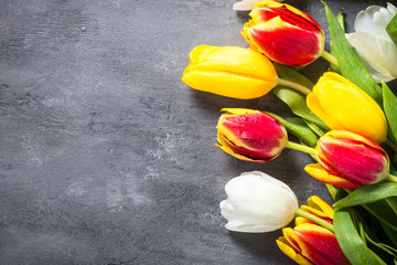 Tulips on stone table. Flower background.