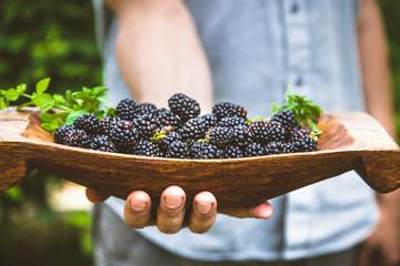 Farmer with blackberries