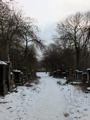 snow covered gravestones along a path in the former woodhouse lane cemetrary in leeds now a park in the university called st georges fields