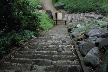 Nature in Japanese park Koishikawa-Korakuen