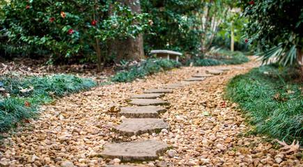 Stone steps in garden