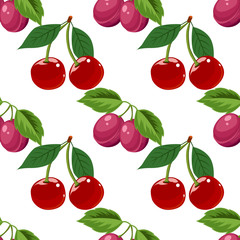 Hand drawn cherry and plum seamless pattern on white background, vector illustration