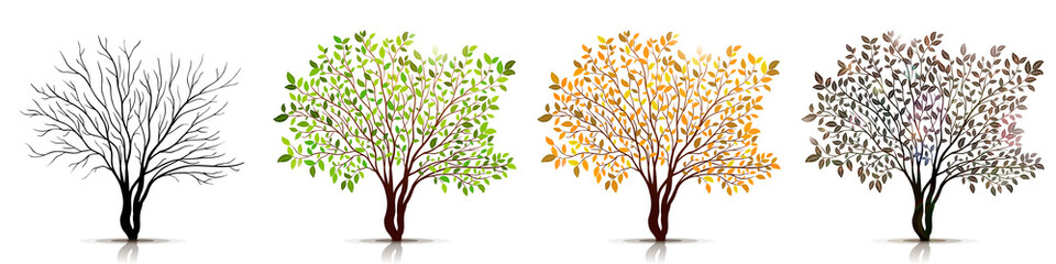 Seasons of tree vector