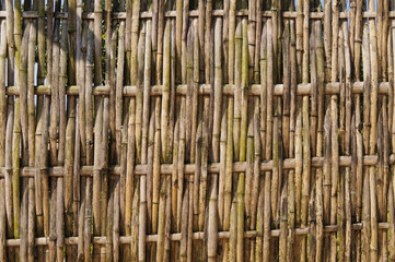 Bamboo fence in Thai temple.