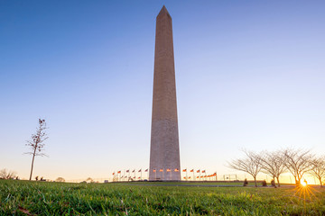 Fototapete - Washington Monument in Washington, D.C.
