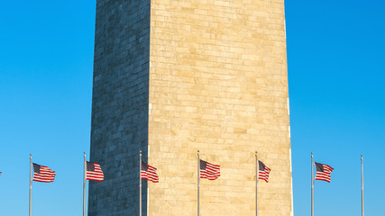 Wall Mural - Washington Monument in Washington, D.C.