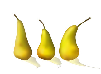 Set of bright yellow pears. Ripe fruit. Vector illustration. Dietary food.