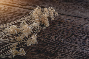 dried flowers on wooden planks background