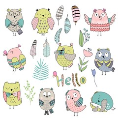 Vector Set of cartoon cute isolated owls, feathers and plant.