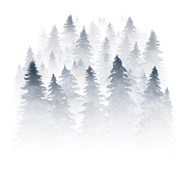 Spruce forest shrouded in mist. Watercolor illuatration isolated on white background.