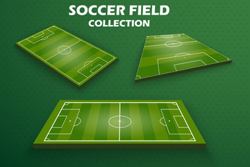 Soccer green field for game. European football field in different point of perspective view. Isolated vector illustration EPS 10