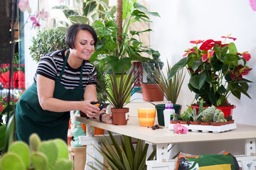 portrait of woman florist in apron and tool in flower shop