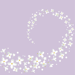 Floral background. White flowers. Vortex. Petals. Small. Border. Frame. Spring. Summer.