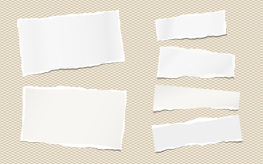 Torn note, notebook paper pieces for text stuck on brown squared background. Vector illustration.