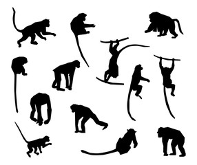Ape and Monkey collection - vector silhouette.