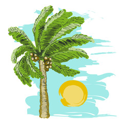 Palm tree sketch and sun on blue background.